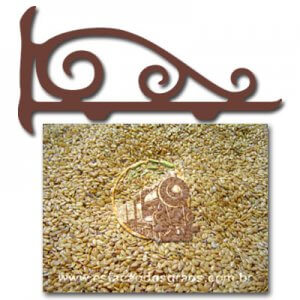 Semente de Linhaça Dourada (Granel - Preço/100g)